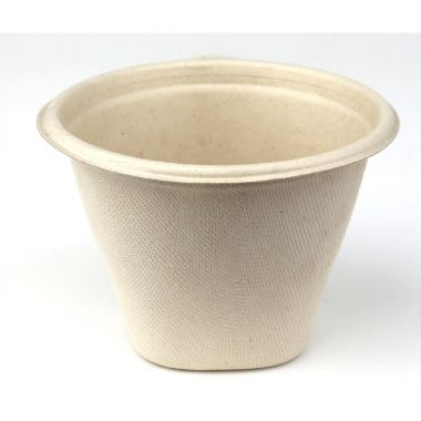 Sabert™ Pulp 16oz Soup Cup